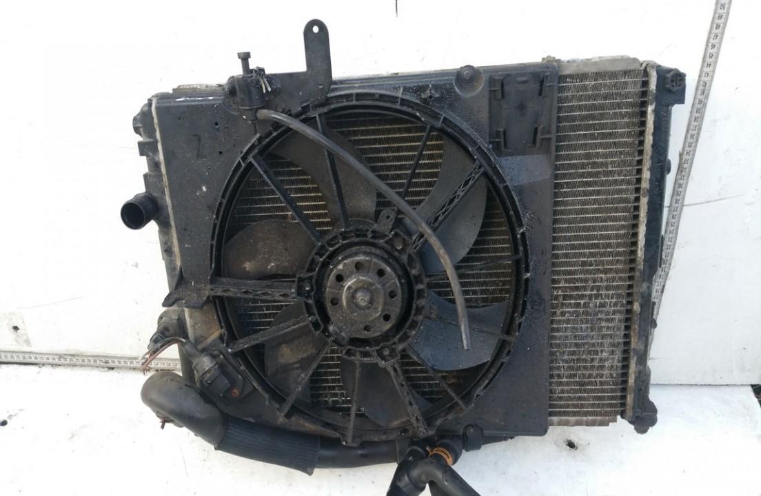 Vandens radiatorius (ausinimo radiatorius) NENUSTATYTA n/a Renault SCENIC 1998 2.0
