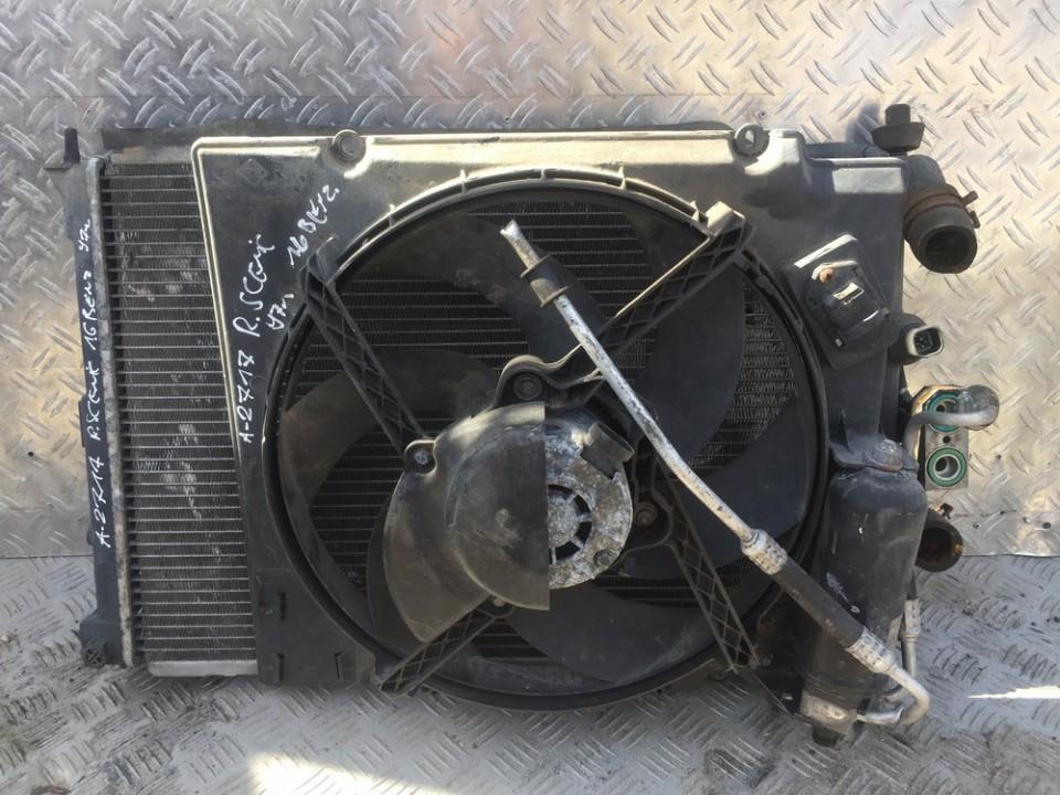 Renault  Scenic Vandens radiatorius (ausinimo radiatorius)