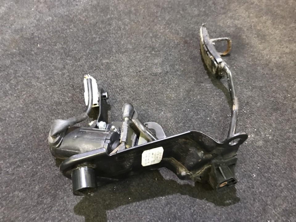 Renault  Scenic Elektrinis greicio pedalas