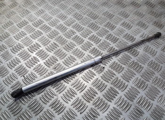 Galinio Dangcio amortizatorius G. (kapoto) 1j6827550c n/a Volkswagen GOLF 2010 1.6