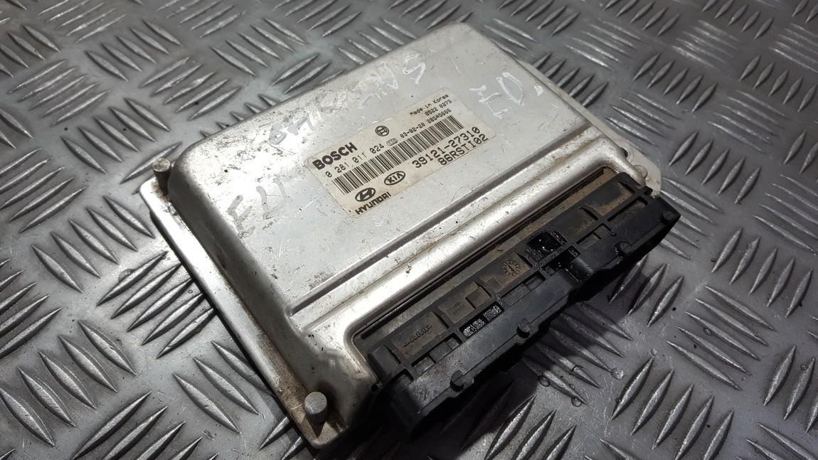 Harness ECU Engine Computer Kia Carens 2002    2.0 0281011024