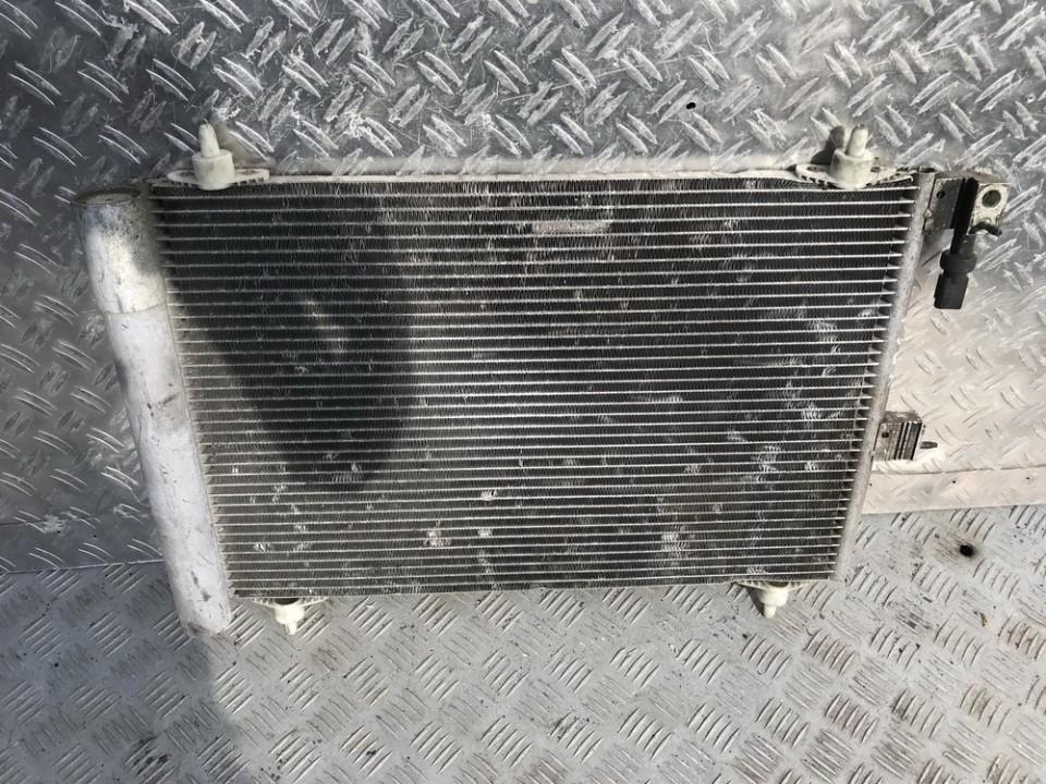 Citroen  Xsara Picasso Oro Kondicionieriaus radiatorius