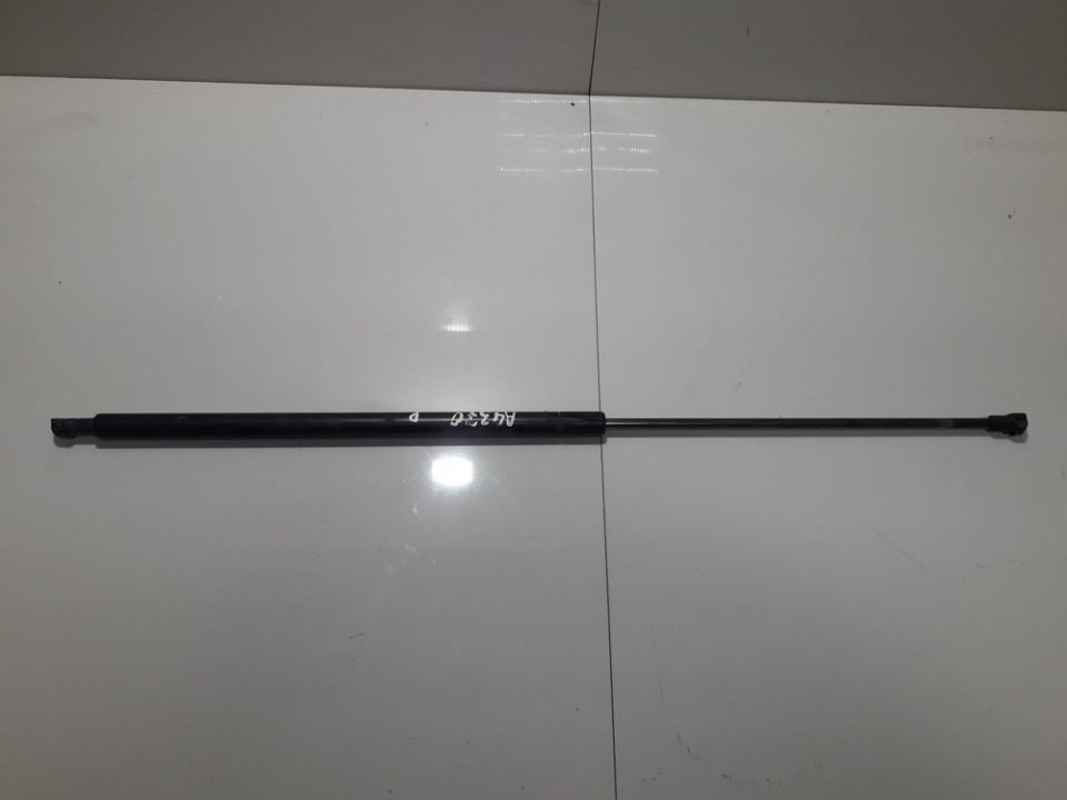 Kapoto amortizatorius 9630662480 USED Peugeot 406 1997 2.0