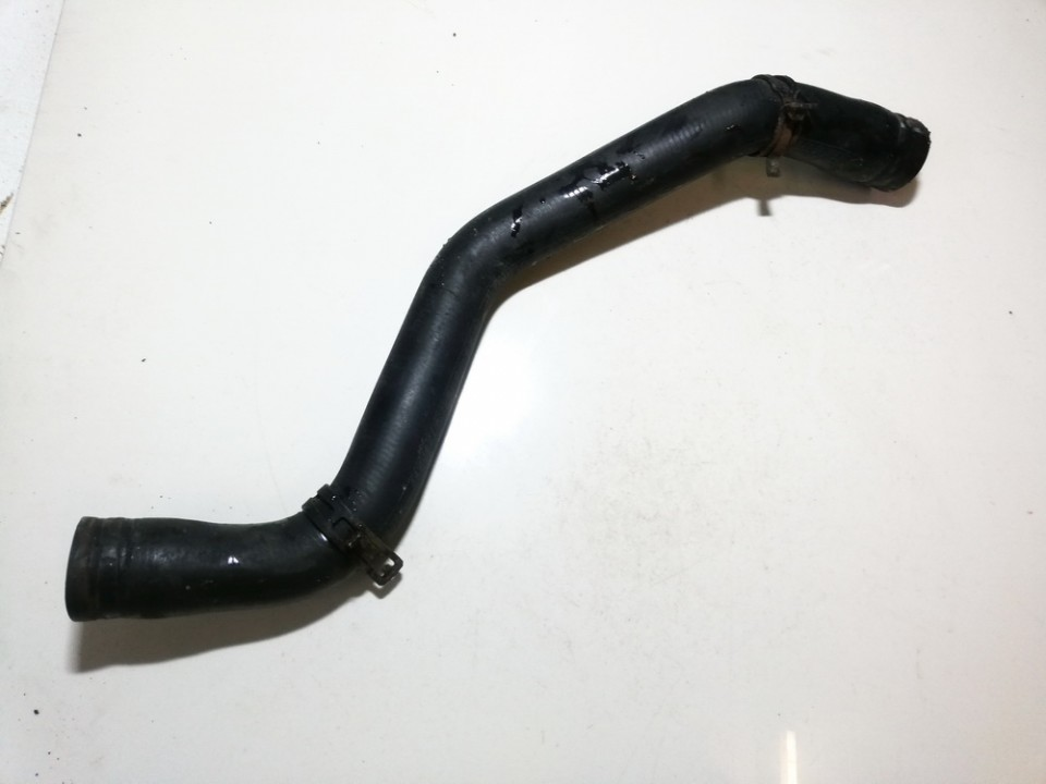 Renault  Scenic Vandens slanga