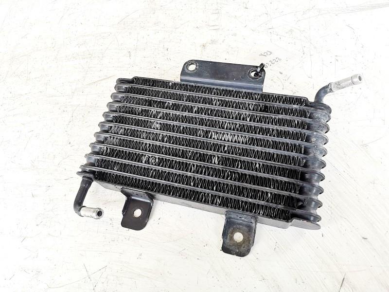 Tepalo radiatorius Mitsubishi Pajero 2014    3.2 1241003860