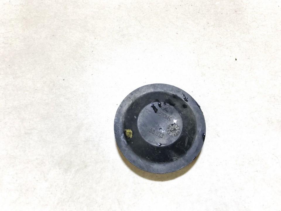 Zibinto lemputes dulkiu dangtelis P. Volkswagen Passat 1998    1.8 153873