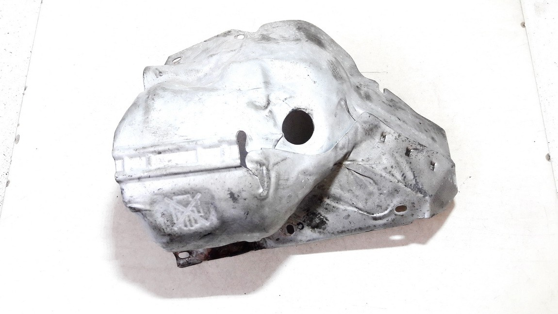 Kolektoriaus apsauga Peugeot RCZ 2011    1.6 V75956058002