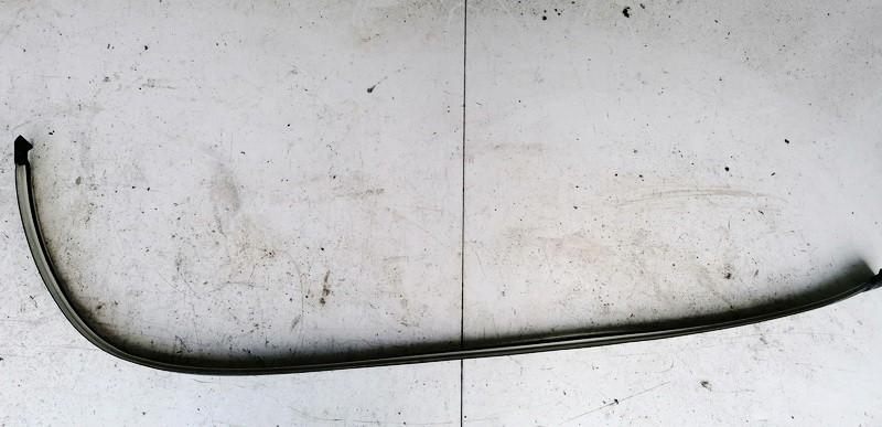 Stogo juosta P.K. Renault Scenic 2001    1.9 0105565