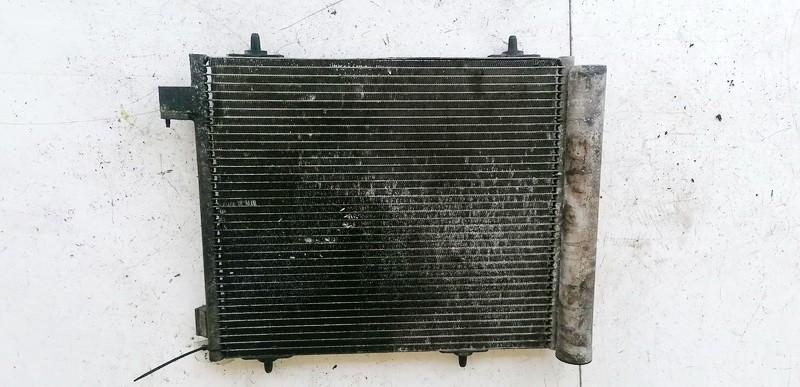 Oro Kondicionieriaus radiatorius Citroen C3 2004    1.4 9635759480