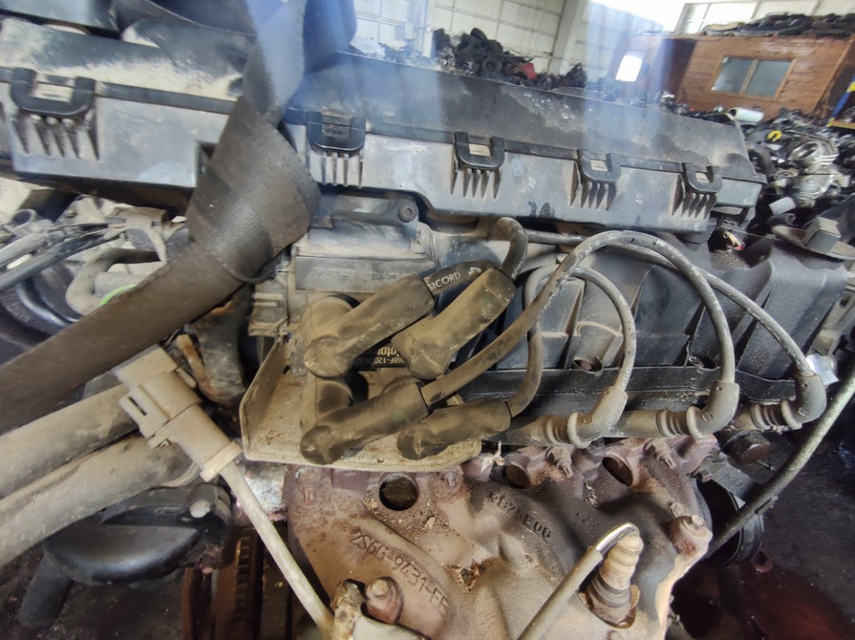 Uzdegimo rite (babina) Ford Fiesta 2006    1.3 988f12029ad
