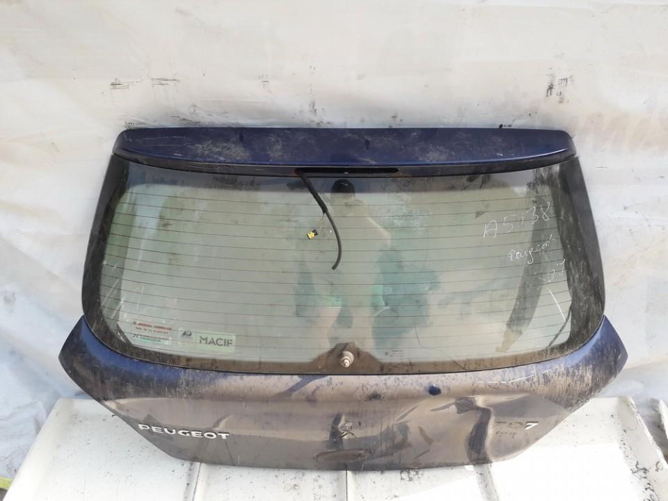 Galinis dangtis G (kapotas) Peugeot  307
