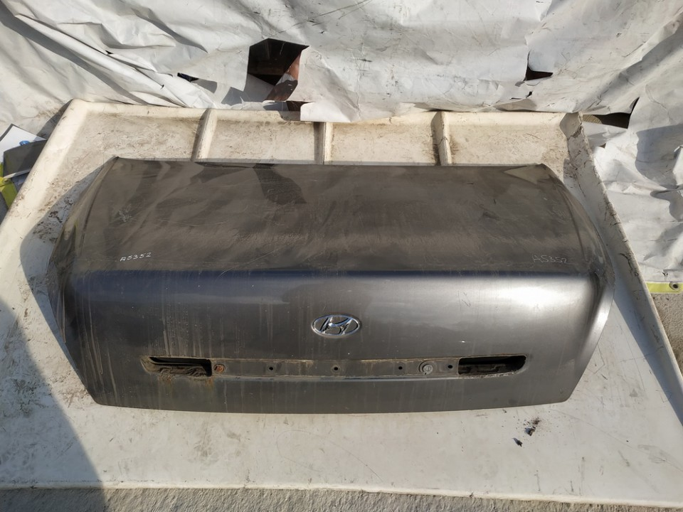 Galinis dangtis G (kapotas) Hyundai XG 1999    3.0 used