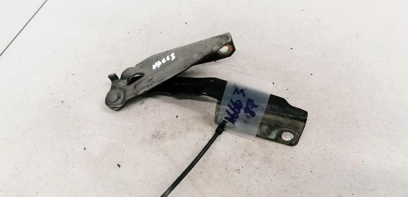 Kapoto vyris P.K. Ford Focus 1999    1.8 XS4116801AE