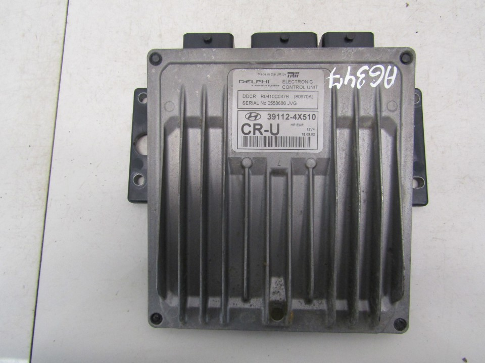 Variklio kompiuteris Hyundai Terracan 2002    2.9 391124X510